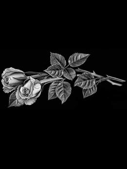 Розы. Арт 16