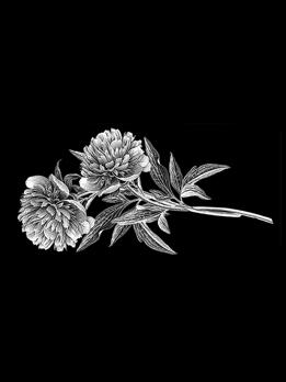 Хризантемы. Арт 8